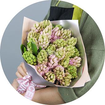 Букет Розовые Гиацинты